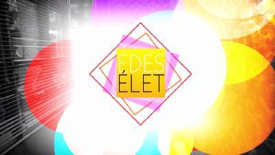 tv2-edes-elet