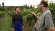 Családi Titkok: Savanyú szőlő - 2.