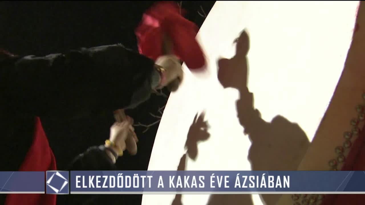 kakas videó