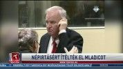 Népirtásért ítélték el Mladicot