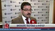 Brüsszel ösztönzi a kvótát