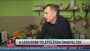 Leopárdkölyök született Miskolcon